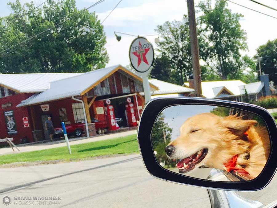 Dog Days in Bemus Point